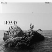 Delta Spirit - What Is There (LP)