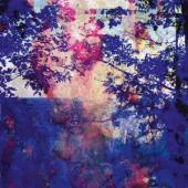 Bucher, Roland - Viaje (LP)