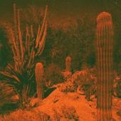 Knowler, Cameron & Eli Wi - Anticipation (LP)