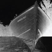 Hammered Hulls - Hammered Hulls (7INCH)