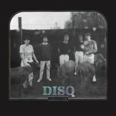 Disq - Collector