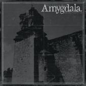 Amygdala - Our Voices Will Soar Forever (LP)