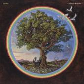 Fay, Bill - Countless Branches (Deluxe)