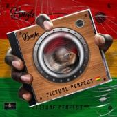 Bugle - Picture Perfect (2CD)