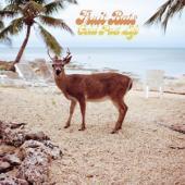 Fruit Bats - Gold Past Life (Opaque Aqua) (LP)
