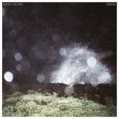 Cronin, Mikal - Seeker (LP)