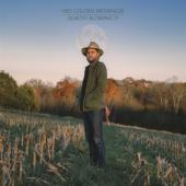 Hiss Golden Messenger - Quietly Blowing It (LP)