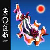 Nino, Divino - Foam (LP)