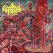 Cerebral Rot - Excretion Of Mortality (Violet/Red Vinyl) (LP)
