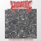 Phobophilic - Undimensioned Identities