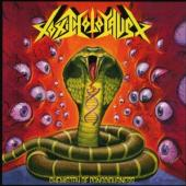 Toxic Holocaust - Chemistry Of Consciousness