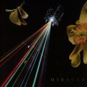 Miracle - Strife Of Love In A Dream