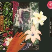 Dos Santos - City Of Mirrors (LP)