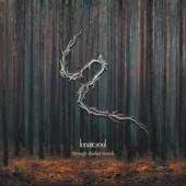 Lunatic Soul - Through Shaded Woods (LP)