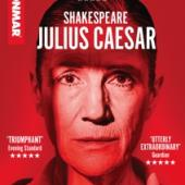 Donmar Warehouse - Julius Ceasar (DVD)