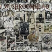 Mushroomhead - A Wonderful Life