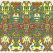 KING GIZZARD & THE LIZARD WIZARD - BUTTERFLY 3000 (DUTCH VERSION) (LP) (Coloured)