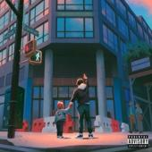 Skyzoo - All The Brilliant Things (LP)