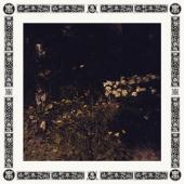Davachi, Sarah - Pale Bloom (LP)