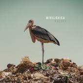 Nihiloxica - Kaloli
