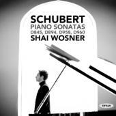 Shai Wosner - Schubert Piano Sonatas Shai Wosner (2CD)