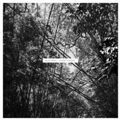 Pekler, Andrew - Tristes Tropiques (LP)