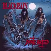 Blackrain - Dying Breed (Red With White Swirls Vinyl) (2LP)
