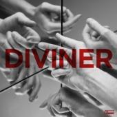 Thorpe, Hayden - Diviner LP