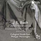 Collegium Vocale Gent Philippe Herr - Bach Oster-Oratorium. Himmelfahrts- (2CD)