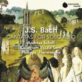 Andreas Scholl Collegium Vocale Phi - J.S. Bach Cantatas For Alto Solo