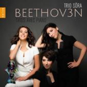 Trio Sora - Complete Piano Trios (3CD)