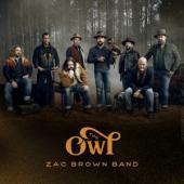 Brown, Zac -Band- - Owl