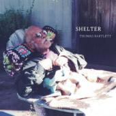 Bartlett, Thomas - Shelter (LP)