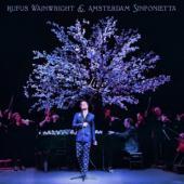 Wainright, Rufus & Amster - Rufus Wainwright (And Amsterdam Sinfonietta) (LP)