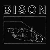 Bison - One Thousand Needles (LP)