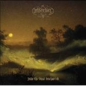 Netherbird - Into The Vast Uncharted (LP)