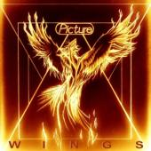 Picture - Wings (LP)