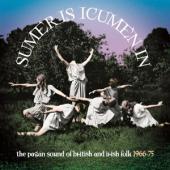 V/A - Sumer Is Icumen In: (The Pagan Sound Of British & Irish Folk 1966-1975) (3CD)