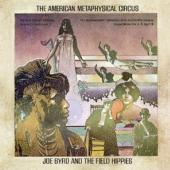 Byrd, Joe & The Field Hip - American Metaphysical Circus