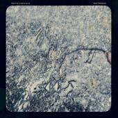Lindstrand, Henrik - Nattresan (LP)