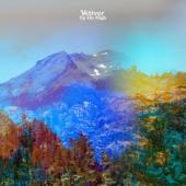 Vetiver - Up On High (LP)