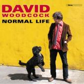 Woodcock, David - Normal Life (LP)