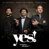 Yes! Trio Feat. Ali Jackson & Aaron - Groove Du Jour (LP)