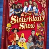 Various Artists - Sint Show (DVD)