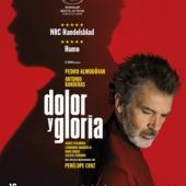 Pedro Almodovar - Dolor Y Gloria (BLURAY)