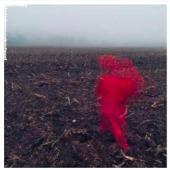 Varley, Will - Hole Around My Head (LP)