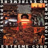 Brutal Truth - Extreme Conditions Demand Extreme Responses (LP)