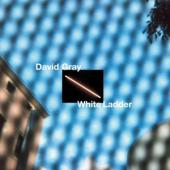 Gray, David - White Ladder (White Vinyl) (2LP)