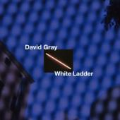 Gray, David - White Ladder (20Th Anniversary) (4LP)