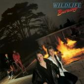 Wildlife - Burning